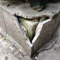 マンション縁石タイル(御影石)の割れ補修 画像